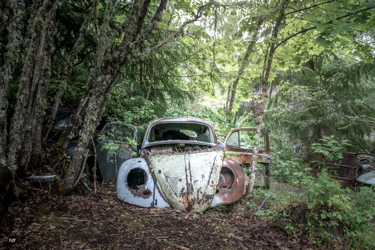 Autofriedhof Bastnäs-Norway-Lost Place-5.JPG