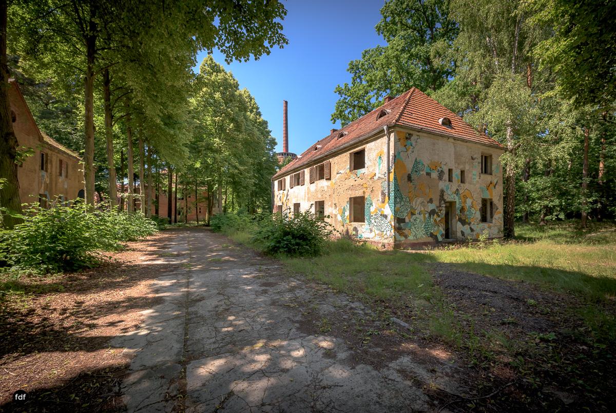 Heilstätten-Lungenheilstätte-Tuberkulose-Urbex-Brandenburg-36.JPG