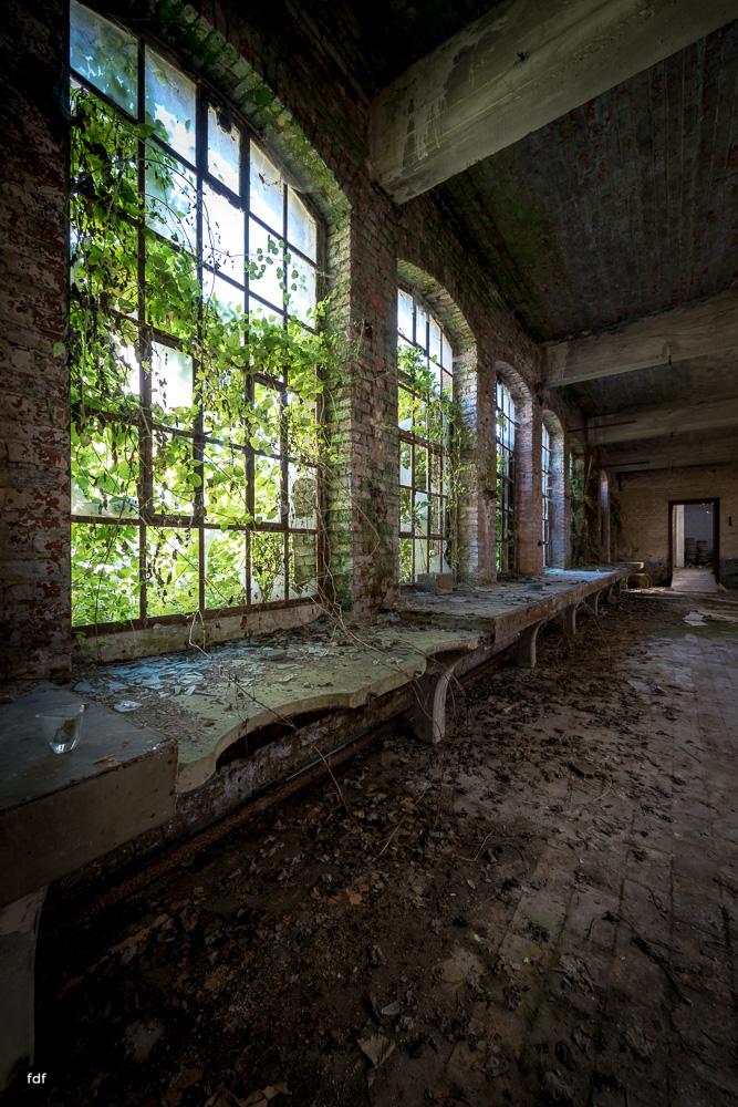 Cristallerie-Kristallfabrik-Lost Place-Belgien-17.JPG