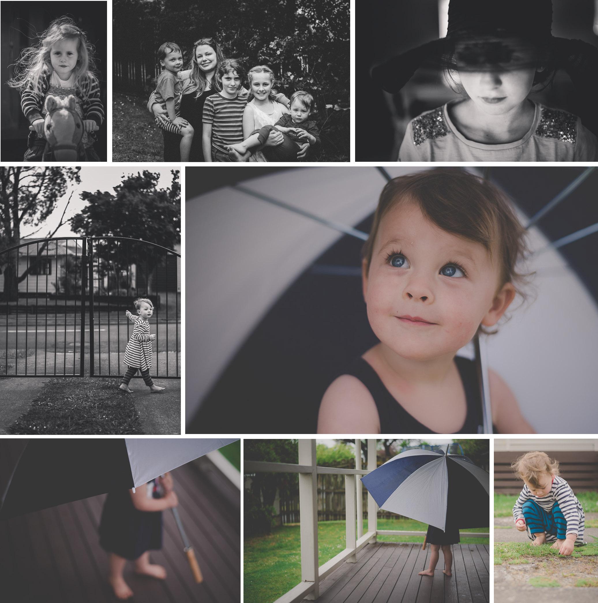 My 365 Project   November {Auckland-Hamilton NZ lifestyle photographer}