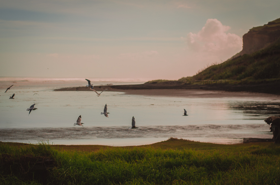 sunset beach 365 Project 2015 {Auckland-Hamilton lifestyle photographer}
