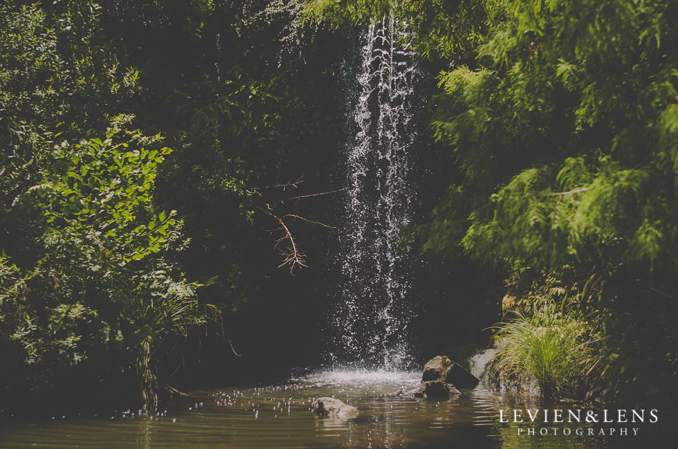 waterfall Hamilton Gardens {Personal family moments - Hamilton lifestyle photographer}