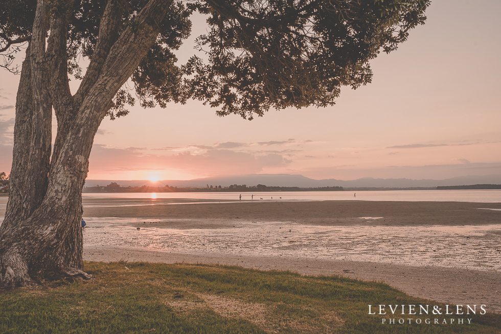 sunset {Auckland-Hamilton-Tauranga wedding photographer}