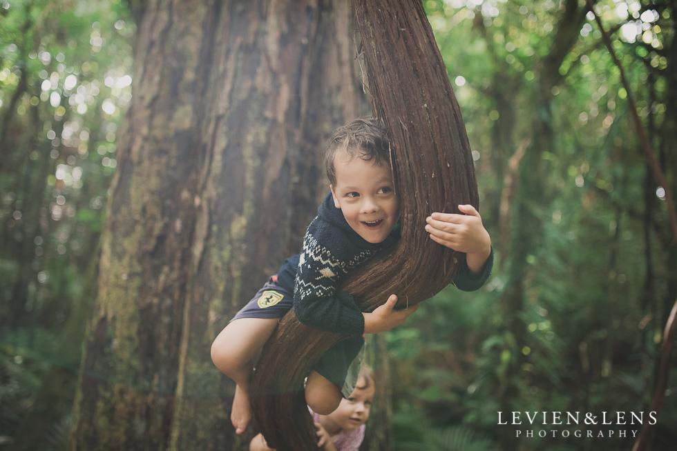 kids on tree Pirongia bush walk - personal moments {Waikato lifestyle wedding photographer}