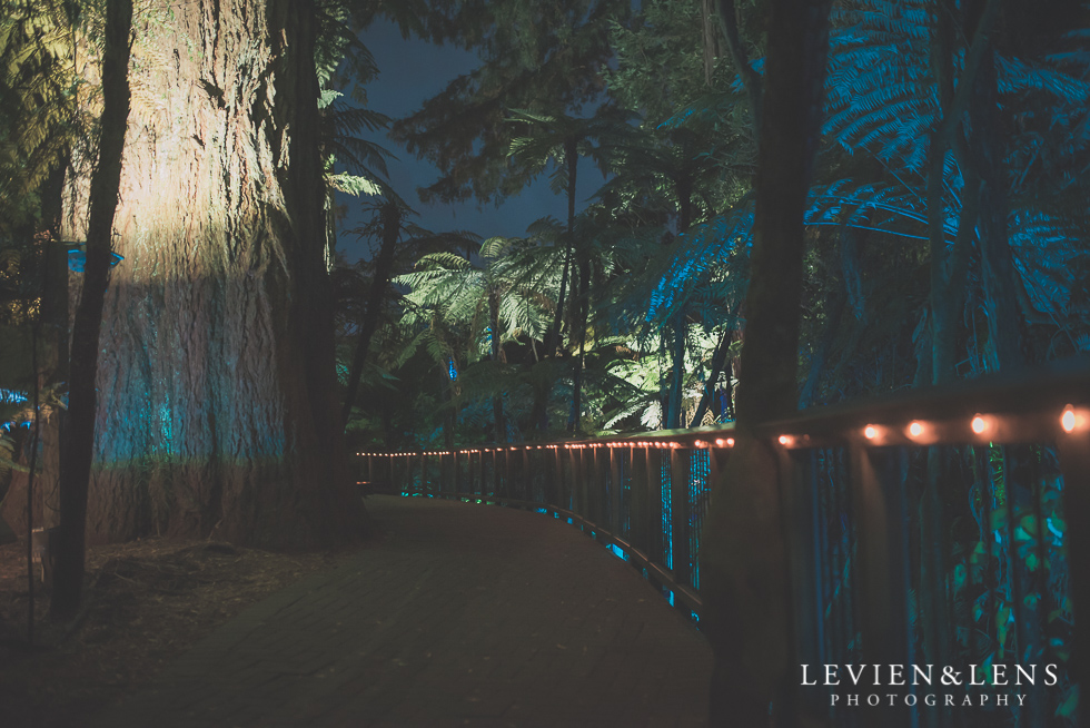 night Rainbow Spring Family fun {Rotorua wedding-engagement photographer}