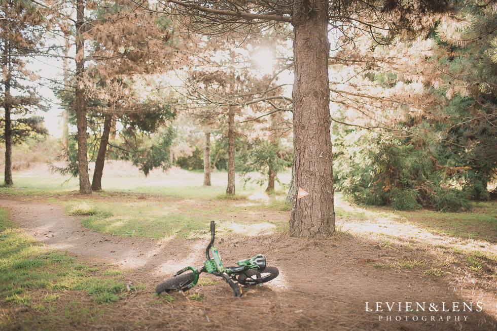 bike in forest My 365 Project. April 2016 {New Zealand lifestyle wedding photographer}