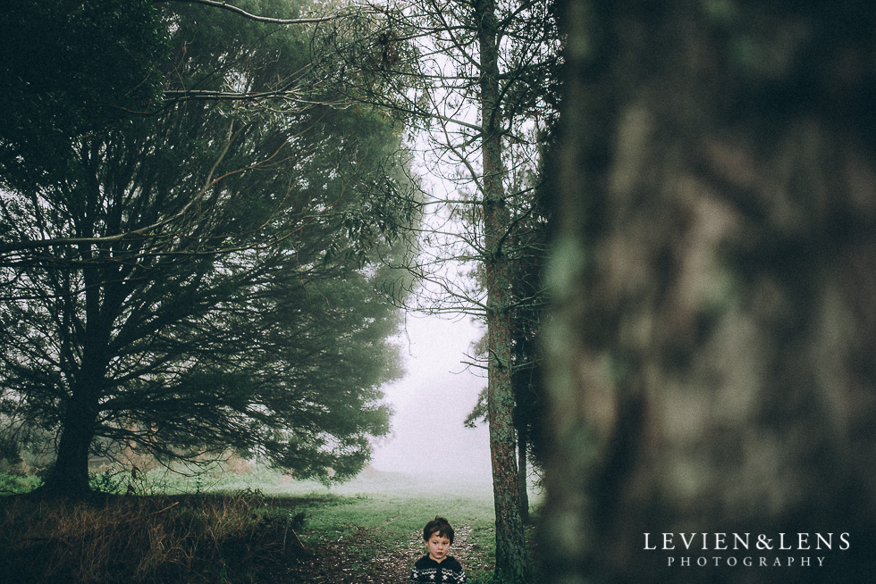 foggy forest and boy {Hamilton - Waikato lifestyle photographer}