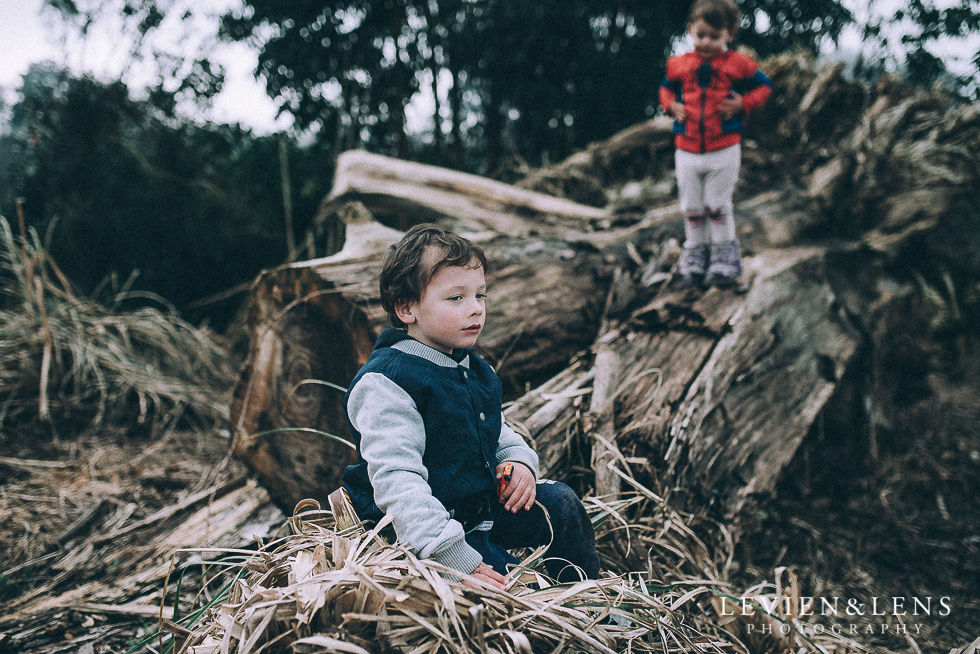 boy on tree {Hamilton - Waikato lifestyle photographer} Cambridge NZ