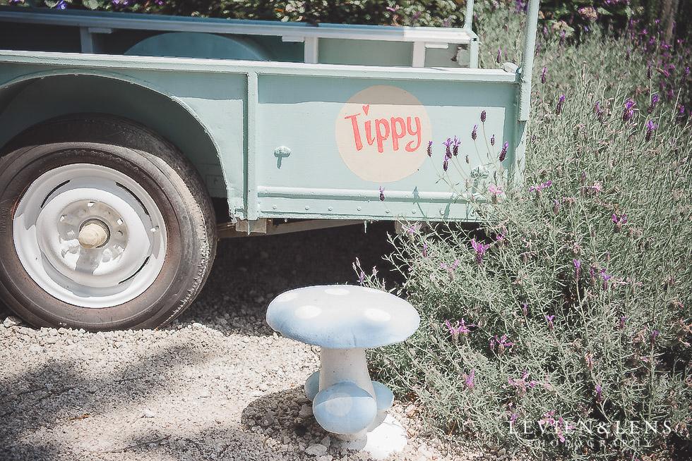 tippy - Old Forest School Vintage Venue {Tauranga - Bay of Plenty wedding photographer}