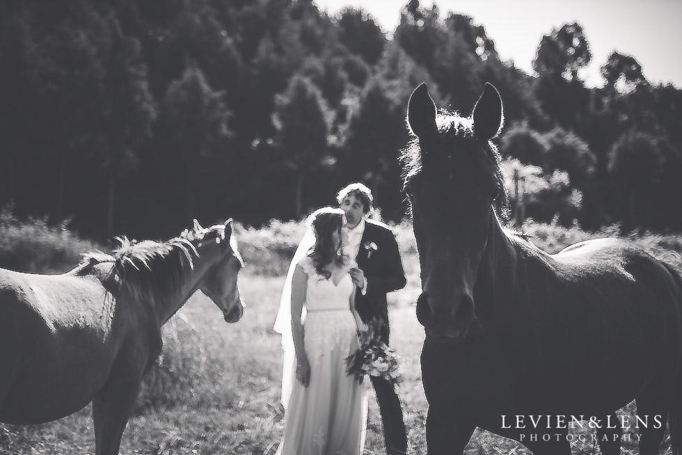 bride groom with horses {Auckland wedding photographer}