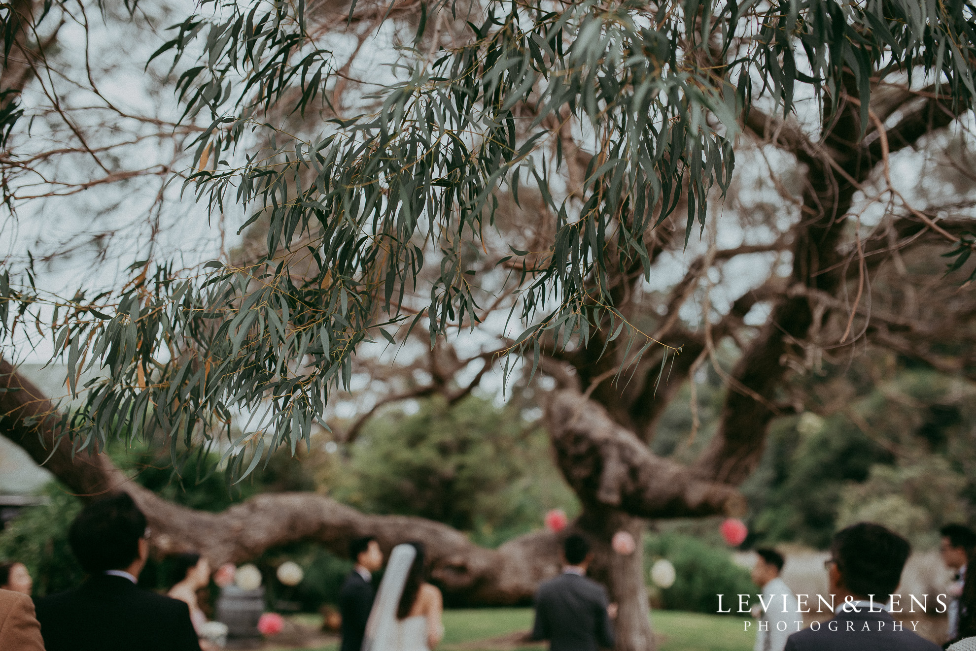 Tawharanui Lodge {Matakana wedding photographers}