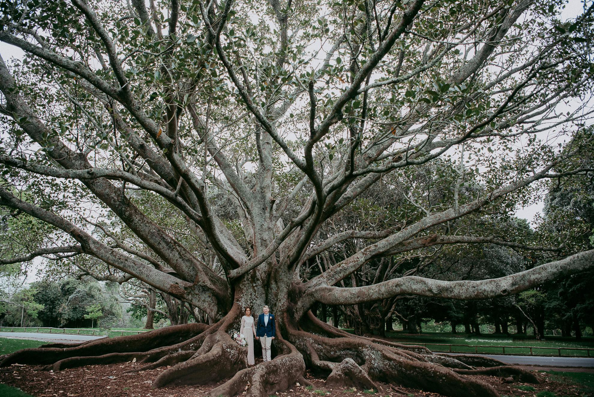 Auckland City WEDDING - Domain {New Zealand elopement-weddings photographers}