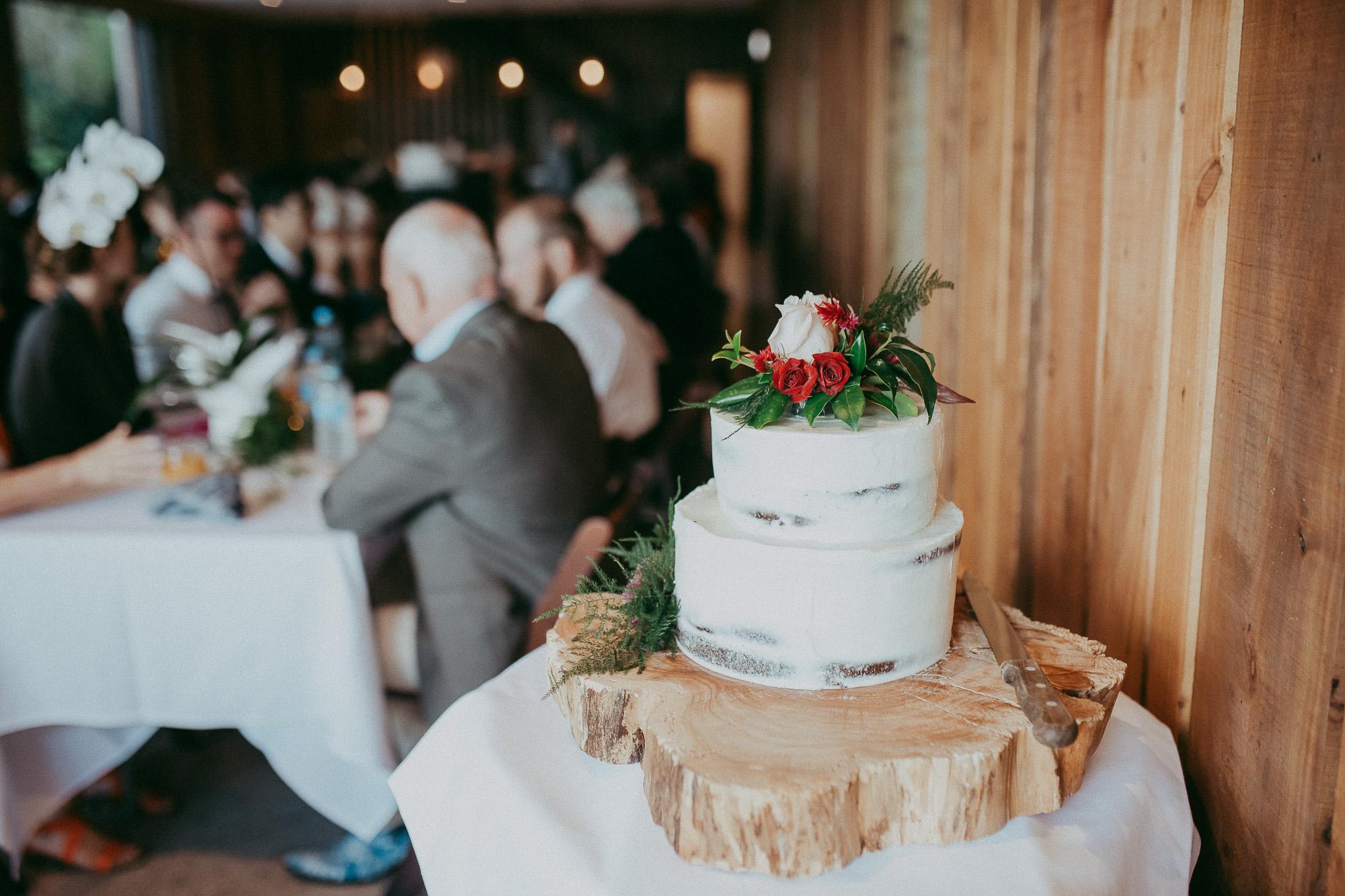 wedding-by-levien-670.JPG