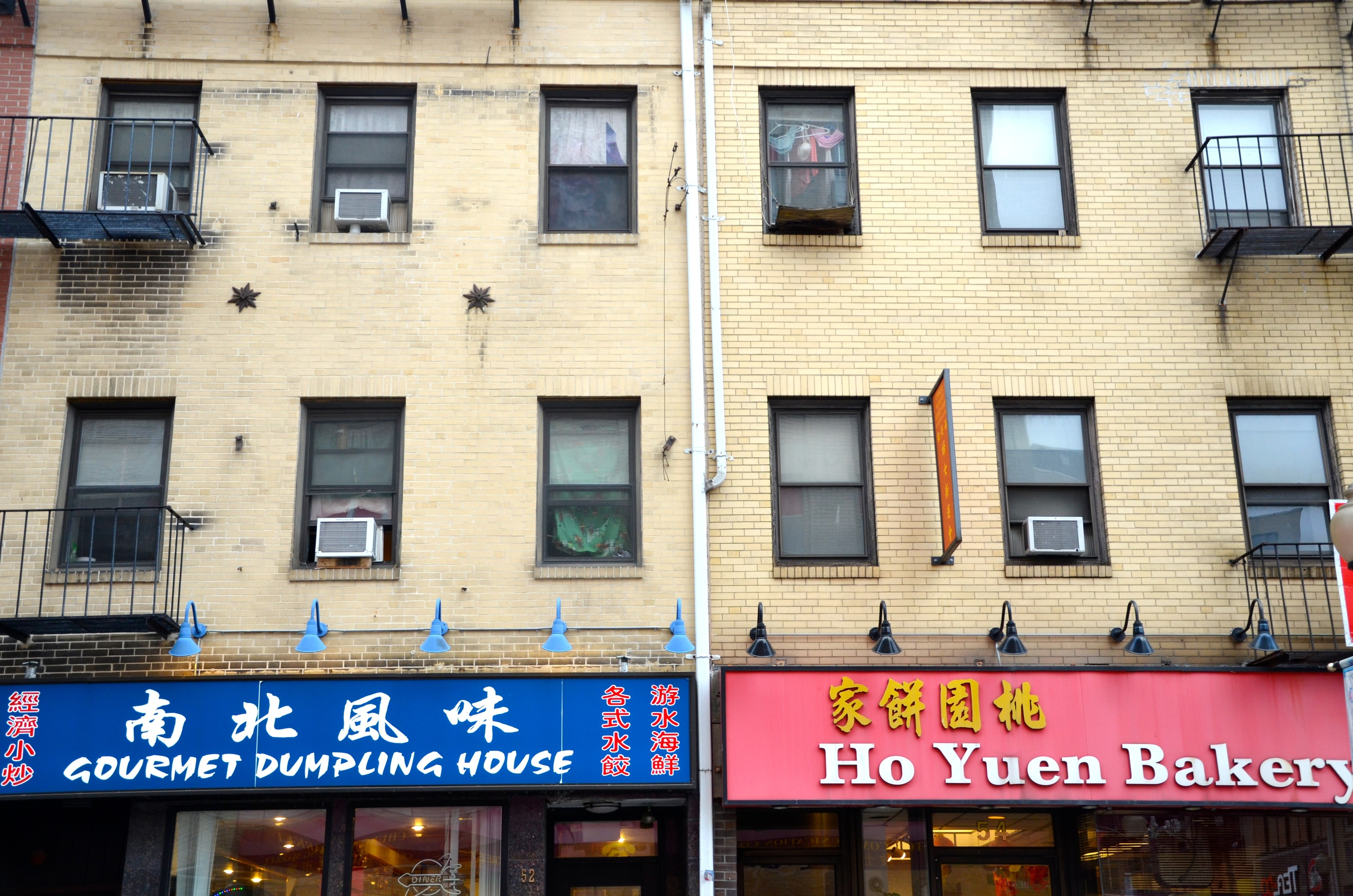 chinatown (sonya kovacic)