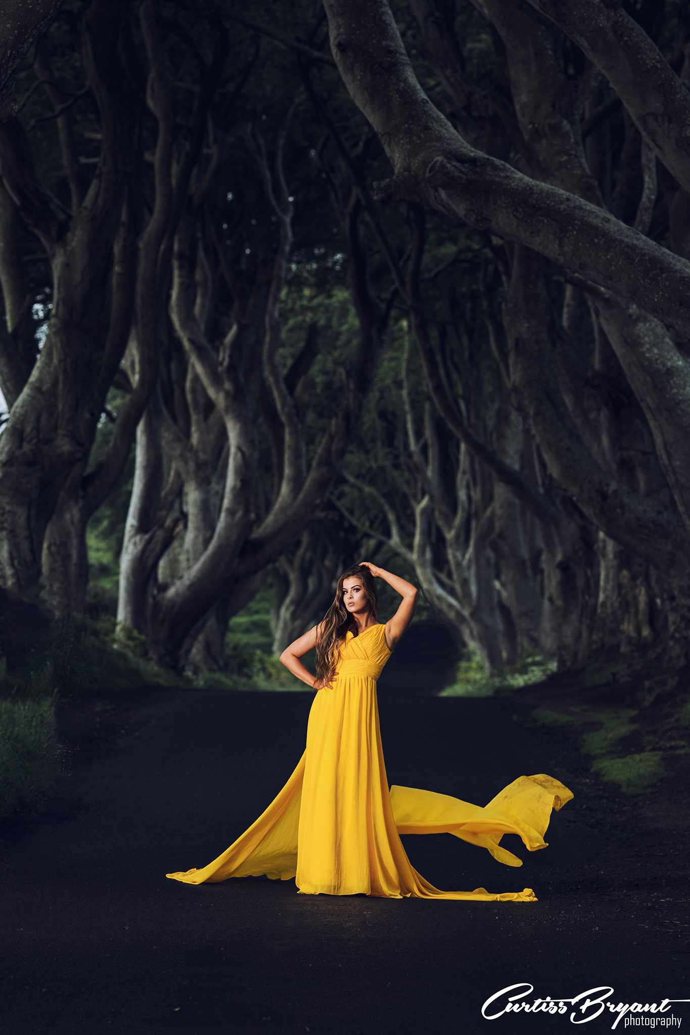 dark hedges portraits