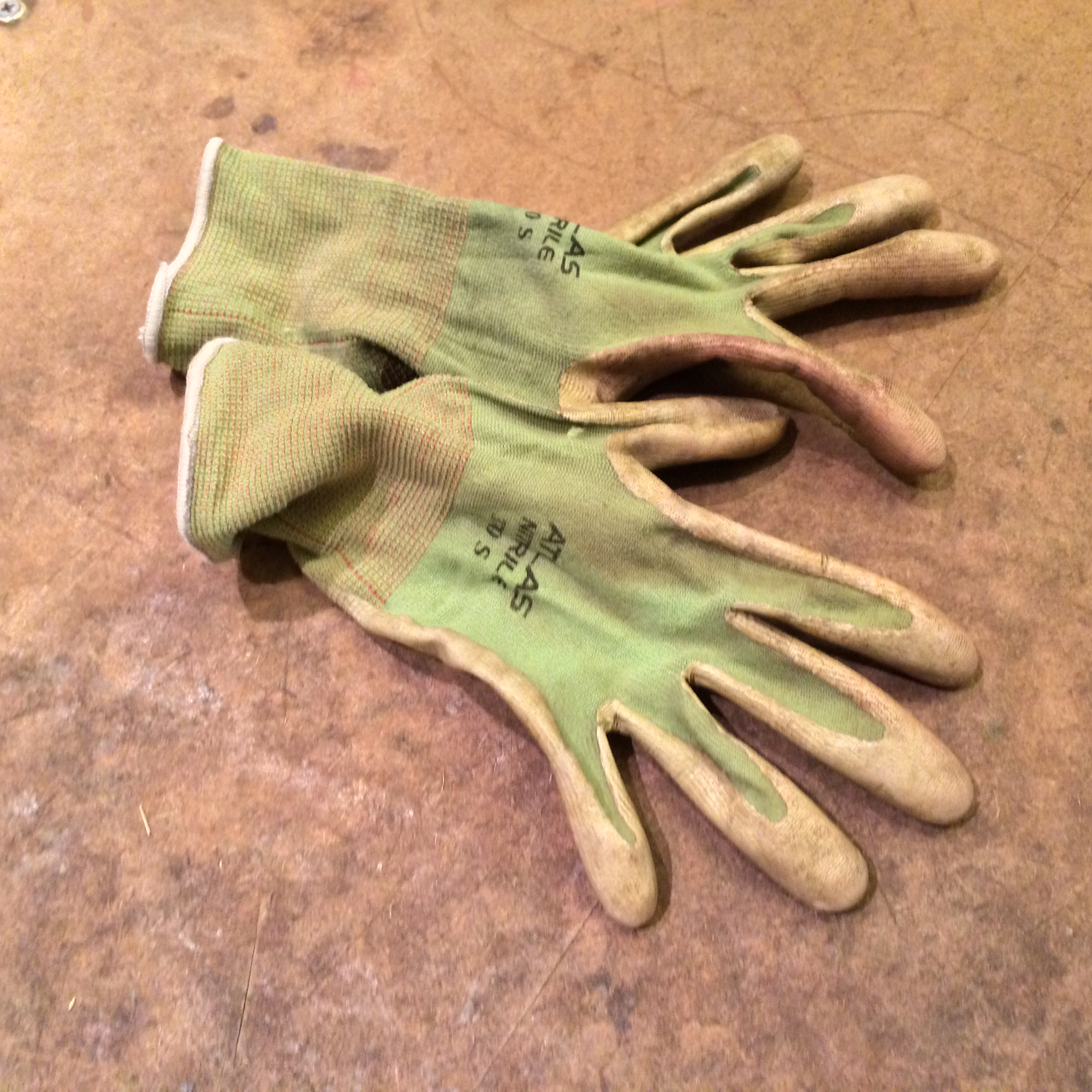 Disgusting gloves to protect from thorns and decaying matter. And insects.