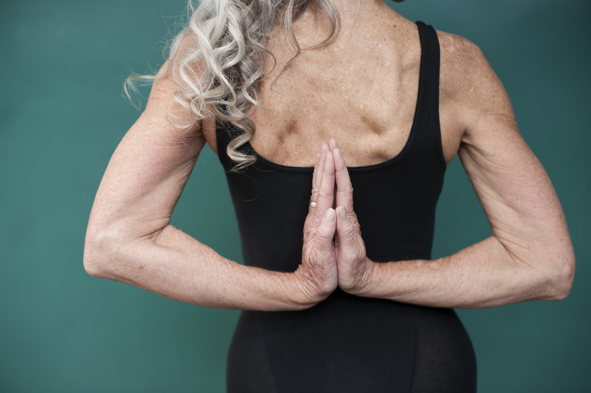 yoga for seniors in tampa