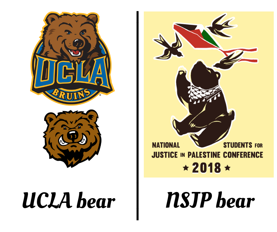 A comparison of the Bruin and SJP bears.