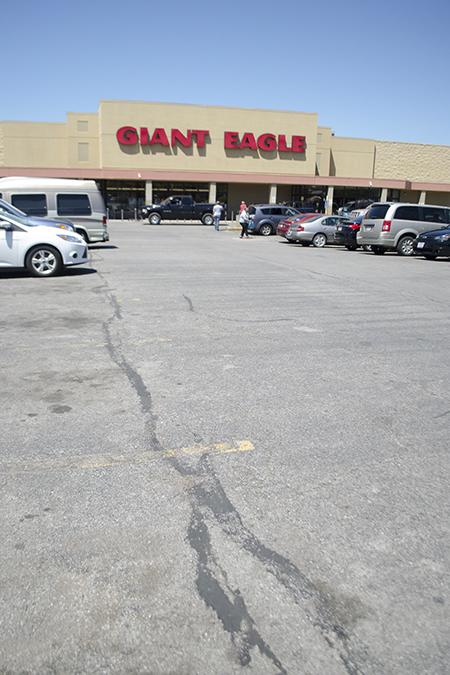 GiantEagle1.jpg