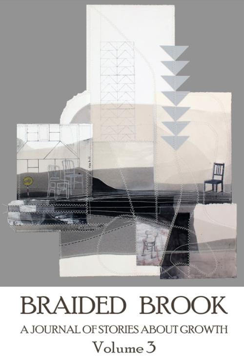 braided_brook_volume_3.png