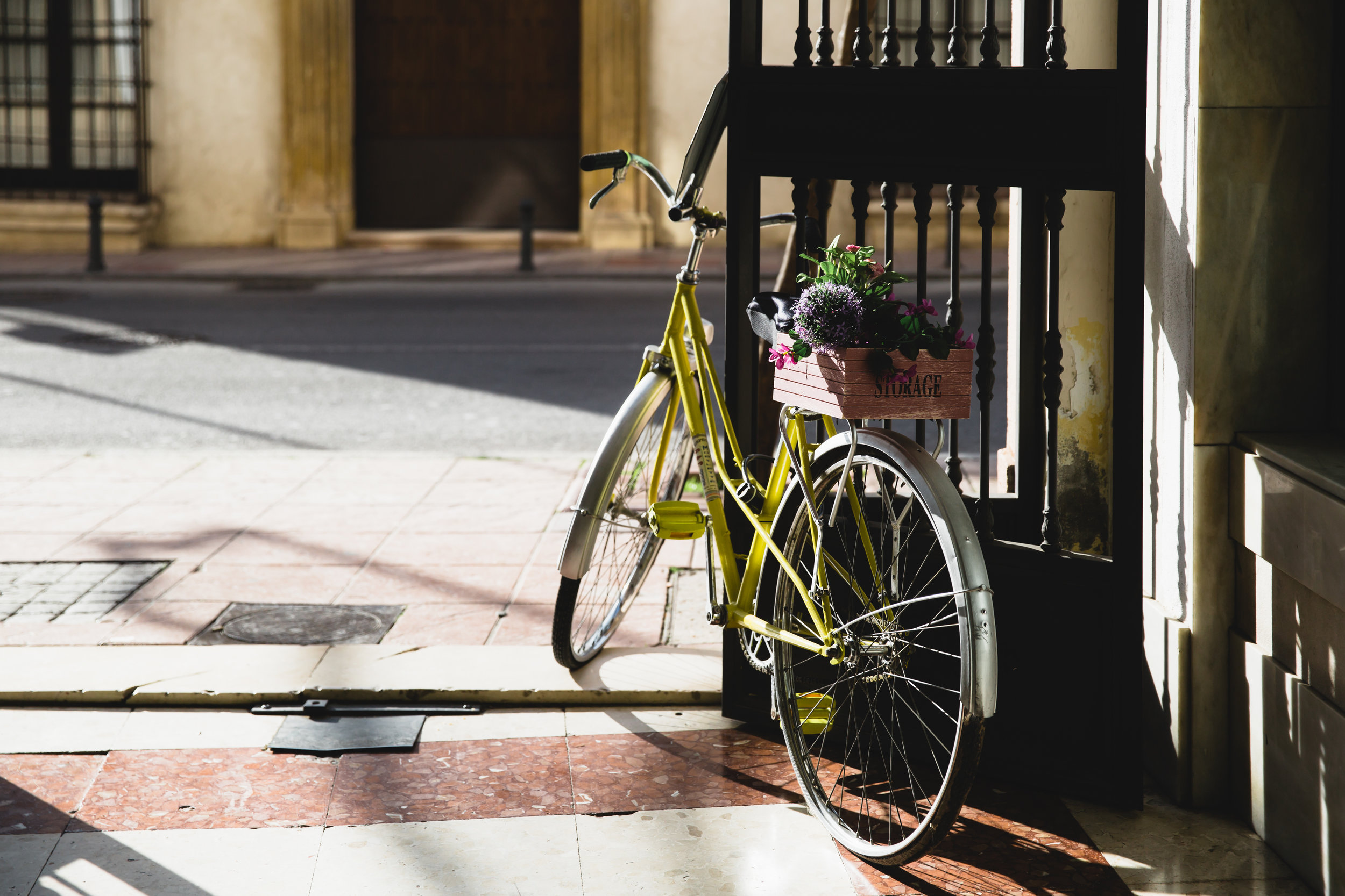 yellow bike-3178.jpg