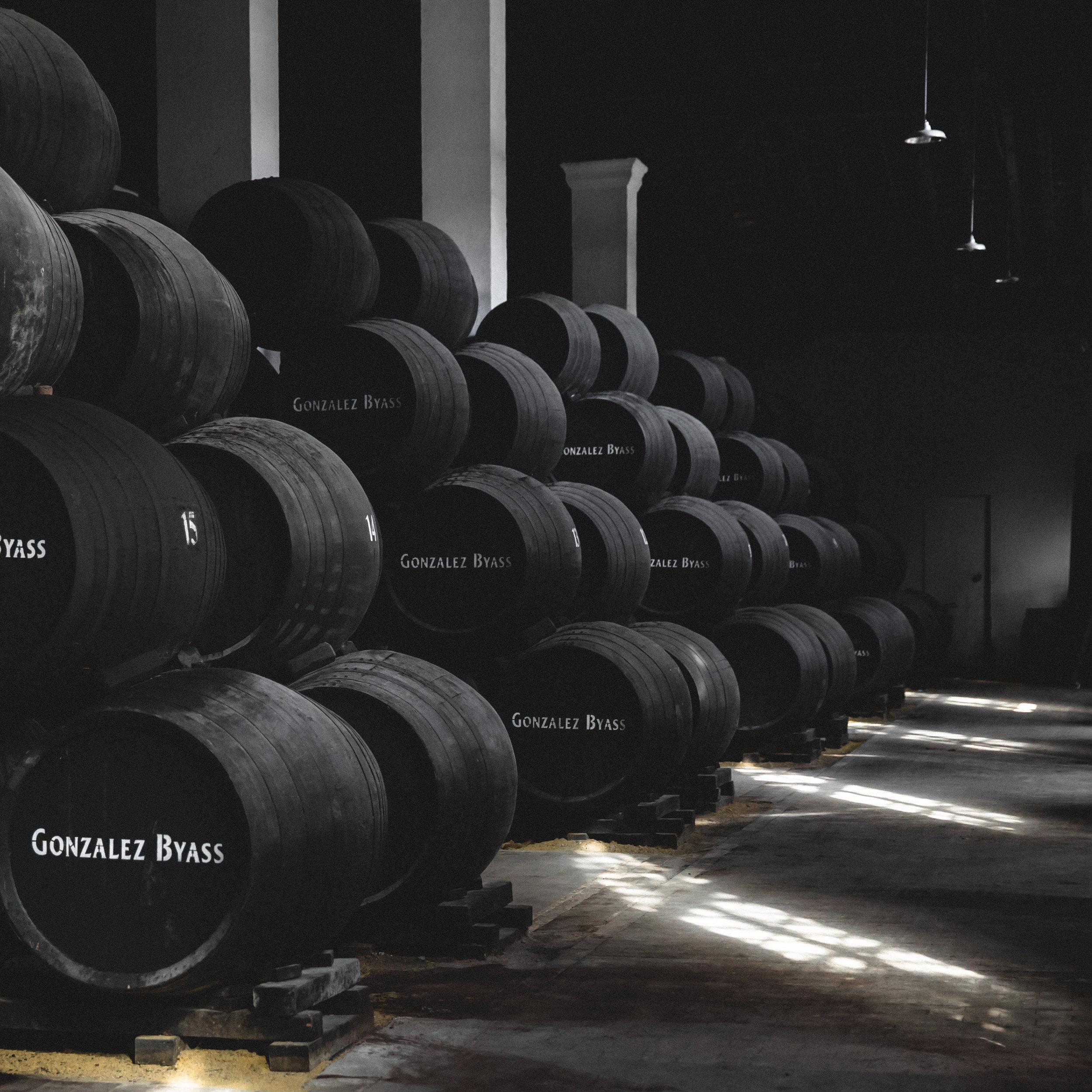 gonzalez byass cellar-3538.jpg