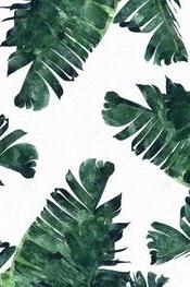 Banana Leaf Watercolor