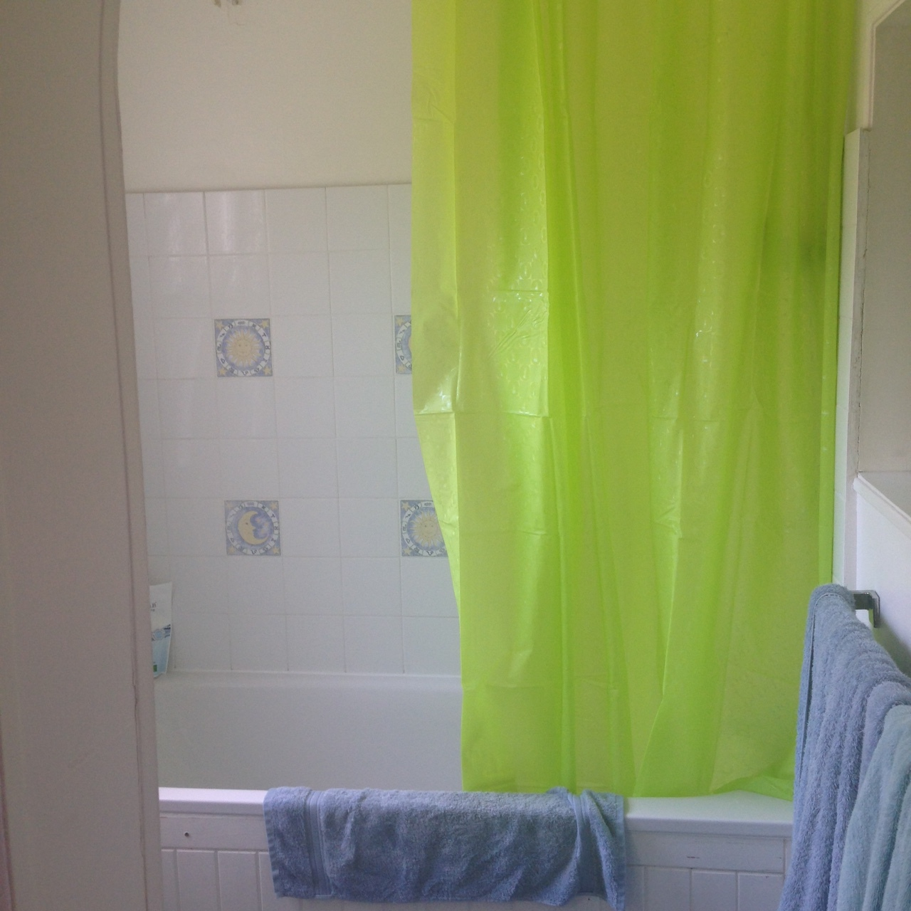 ^  A new bright and happy shower curtain installed after I flooded the bathroom!