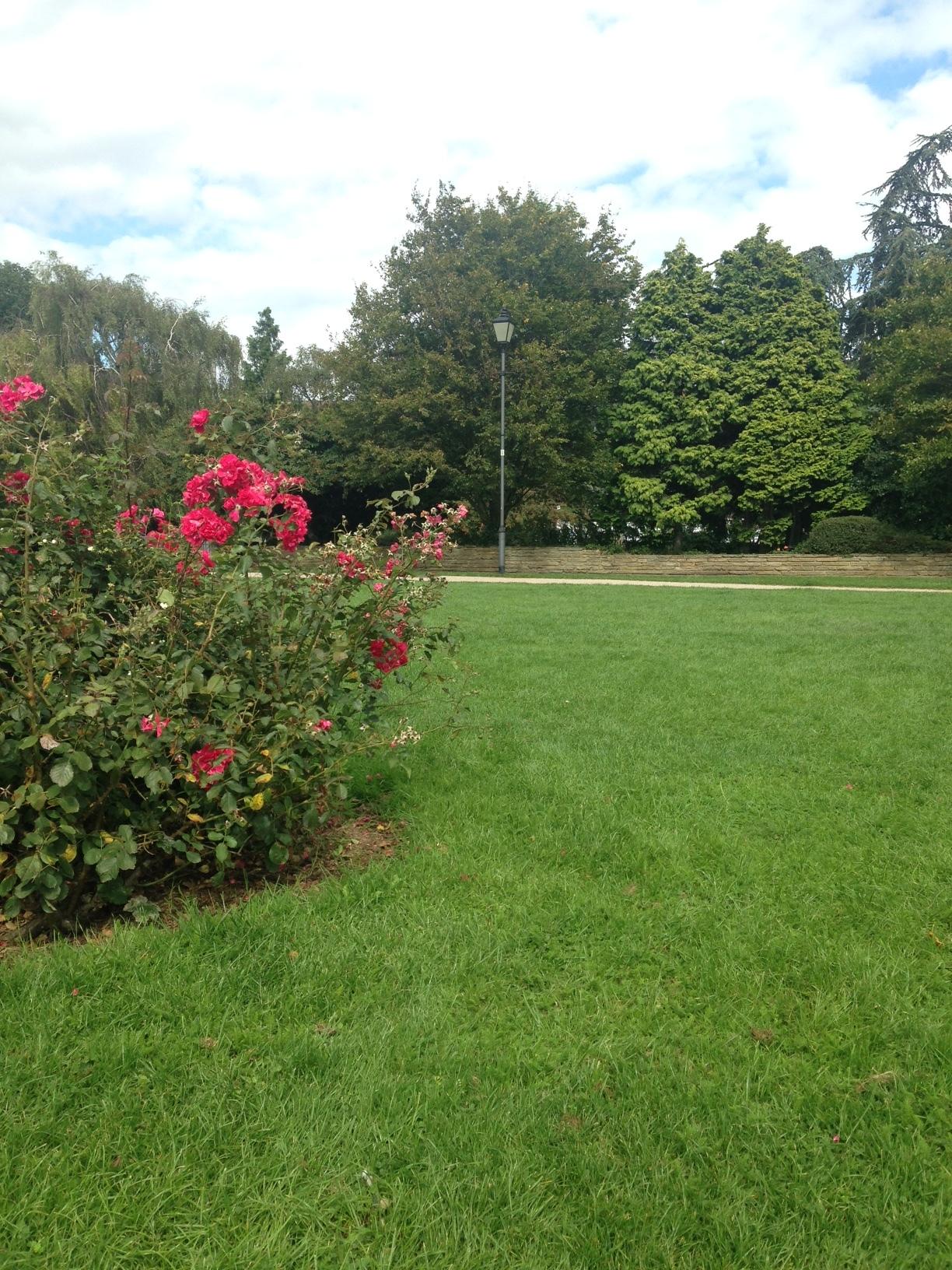 ^  Furnivall Park - a nice picnic spot.