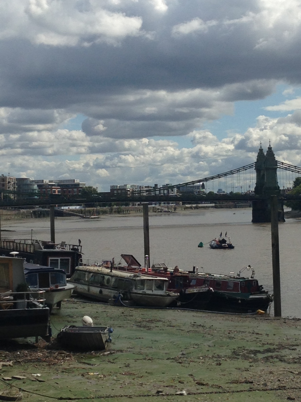 ^  Looking across to Hammersmith Bridge. Super low tide at the moment.