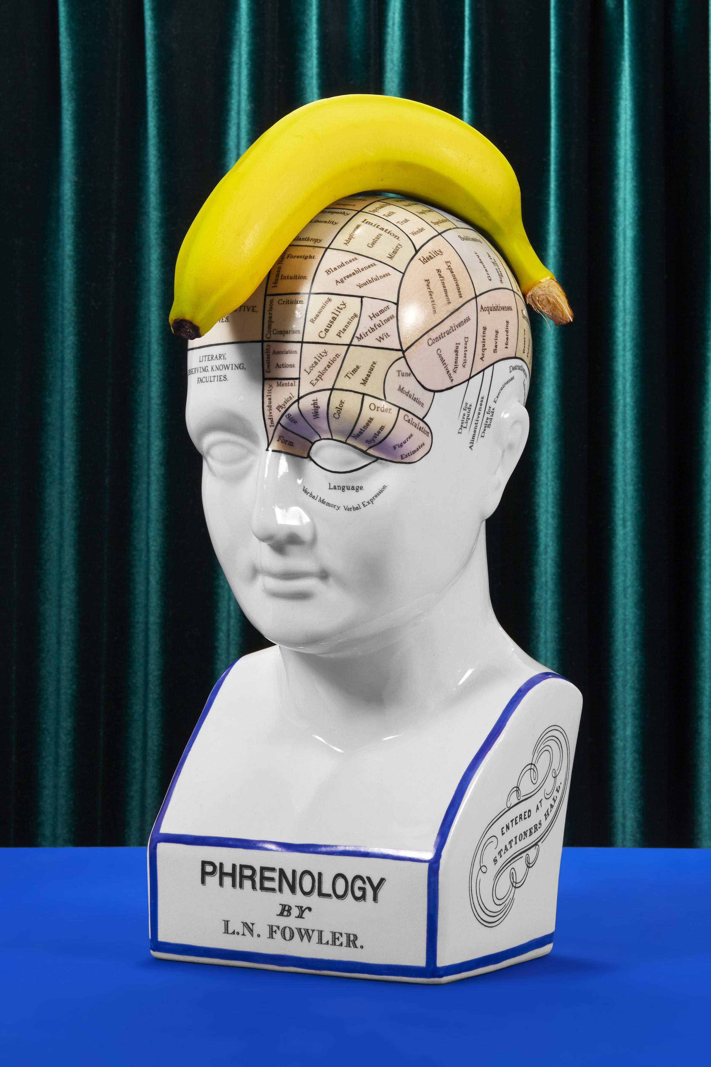 Phernology0415_8x12.jpg
