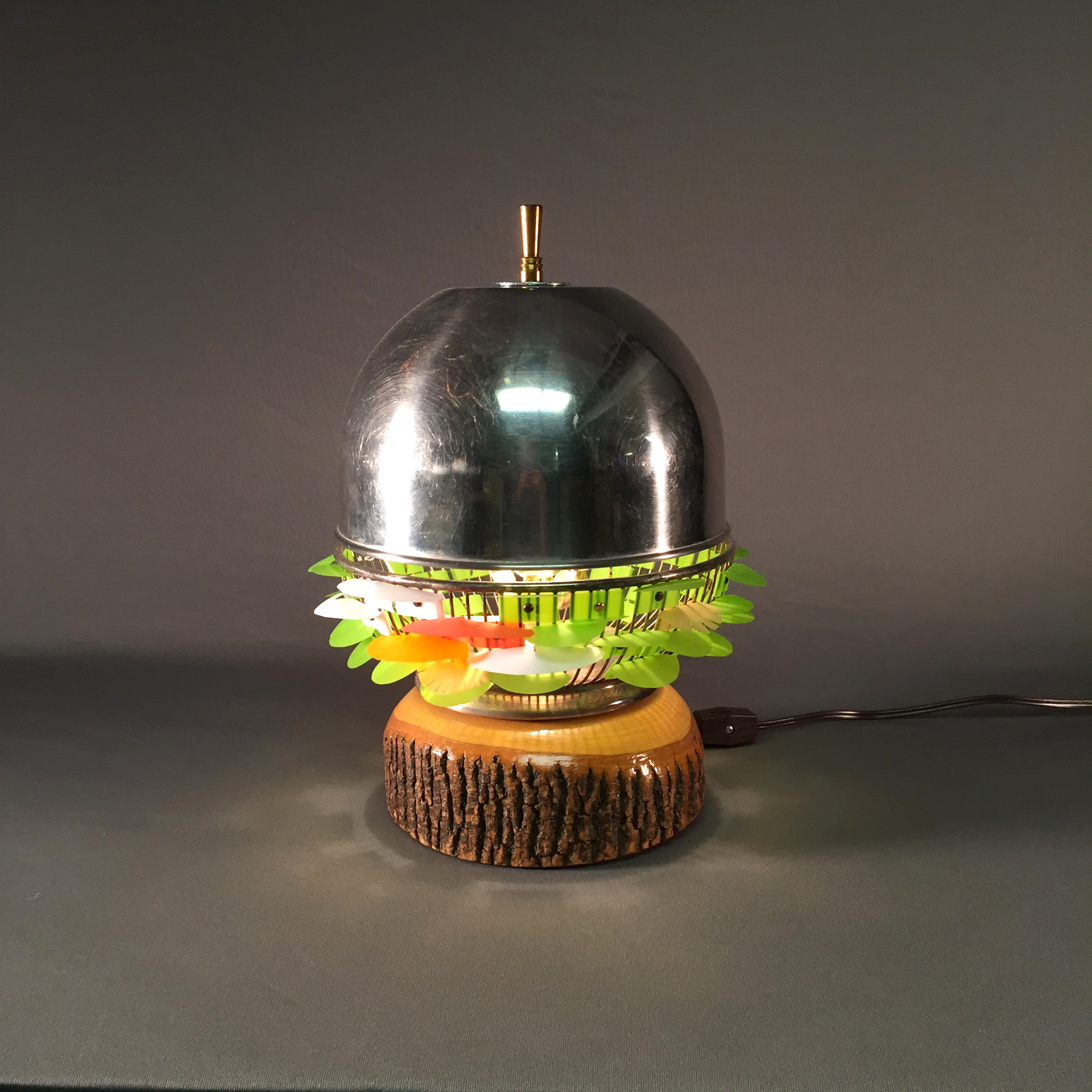 Metal Dome Lichen Lamp