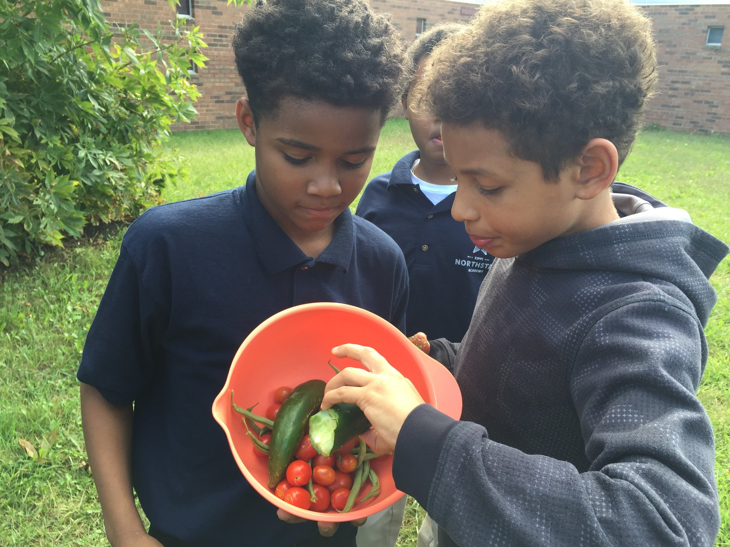 Stephen and a classmate   sampled a cucumber before loading garden produce in the bags to bring home to their families.
