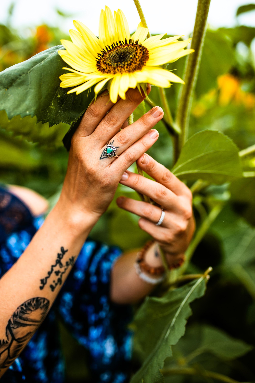 Steph_Sunflowers-2.jpg