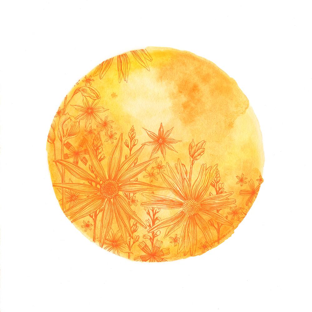 Summer Moon_Preview.jpg