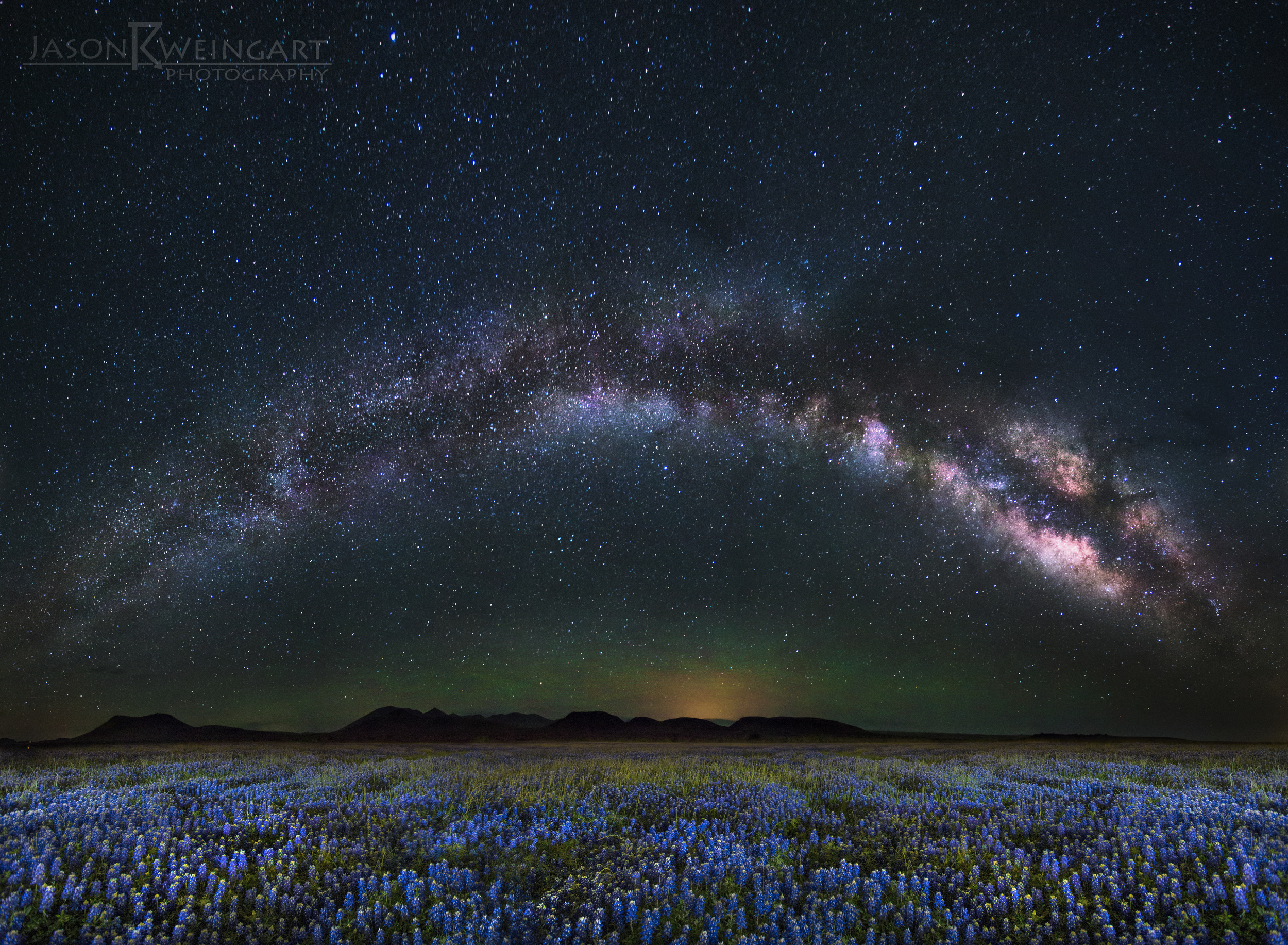 Bluebonnet Milky Way