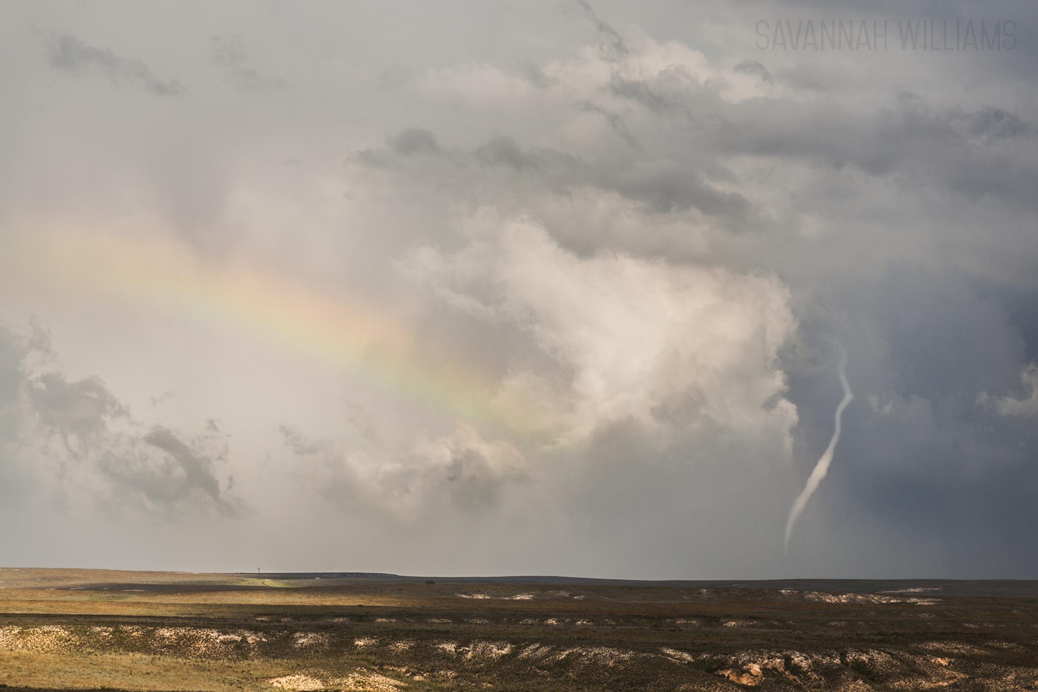Tornado near Groom, Tx. Image by Savannah Williams. I sat back and enjoyed the moment.