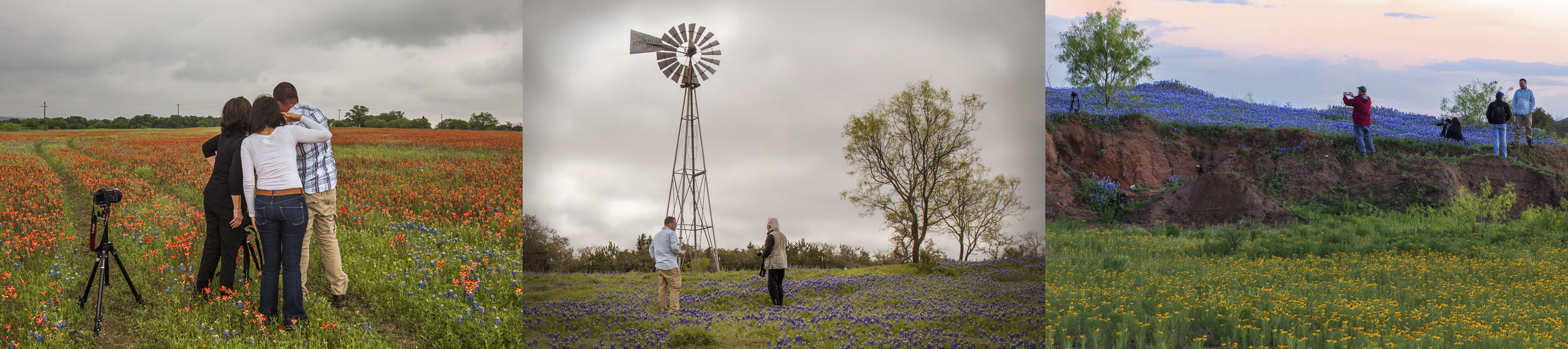 Participants of three separate Texas Bluebonnet Photography Workshops throughout the month.