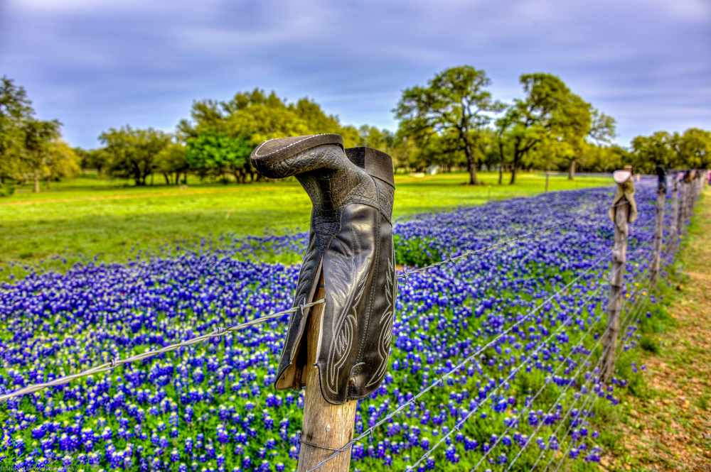 Click, Texas off the Willow City Loop. Image by Michael Bleyzer