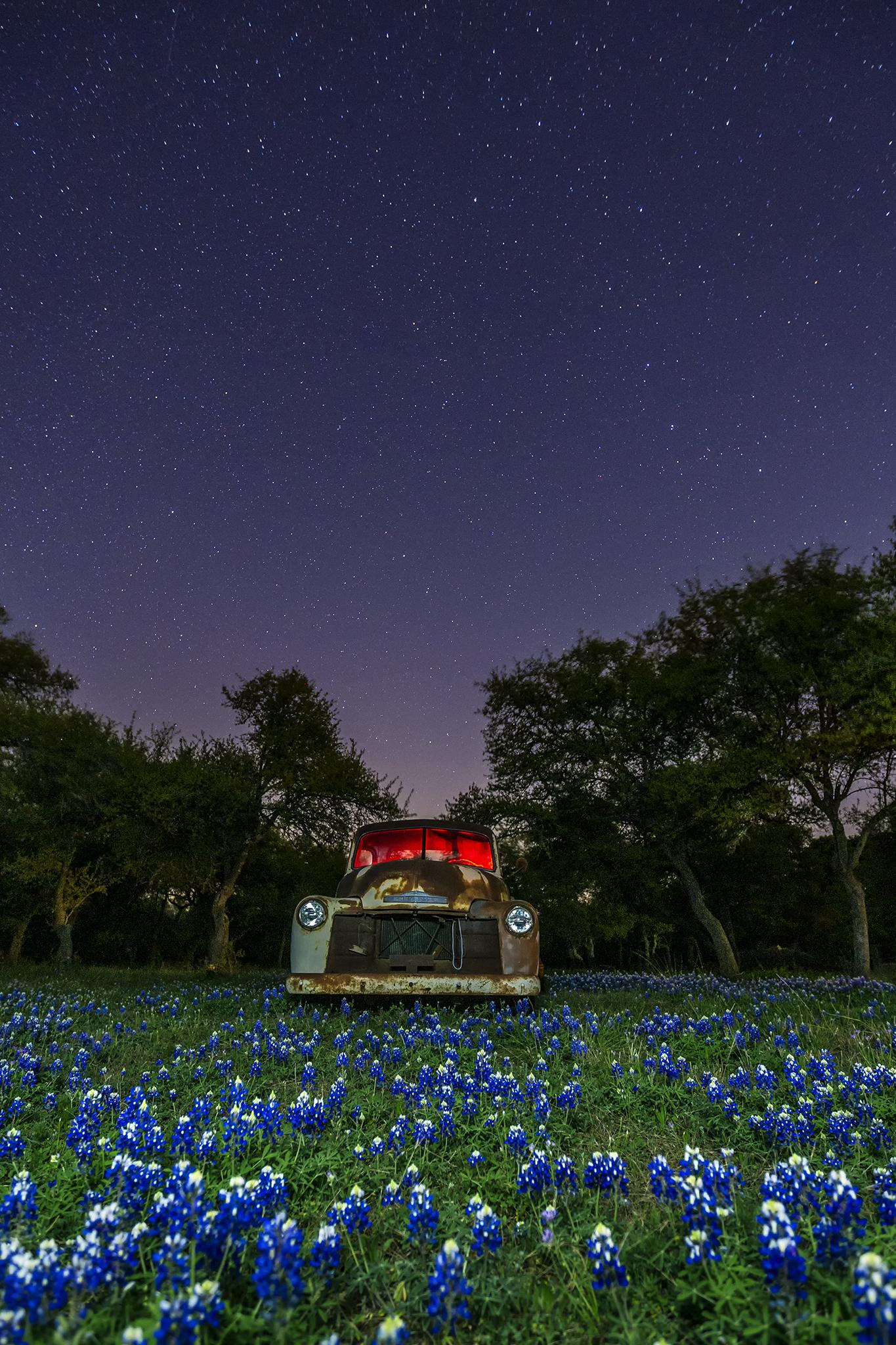 texas bluebonnets night workshop