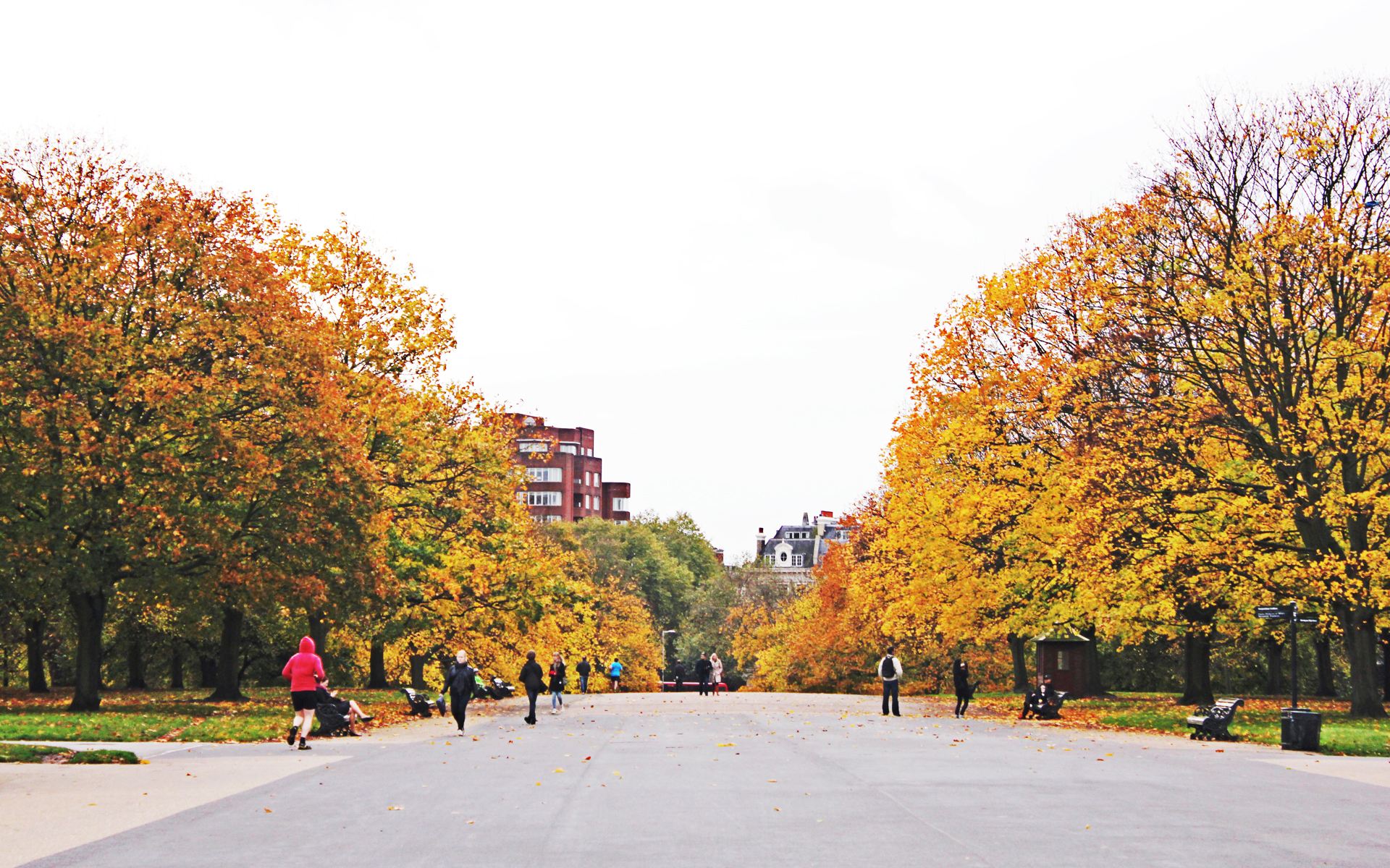 Hyde Park copy.jpg