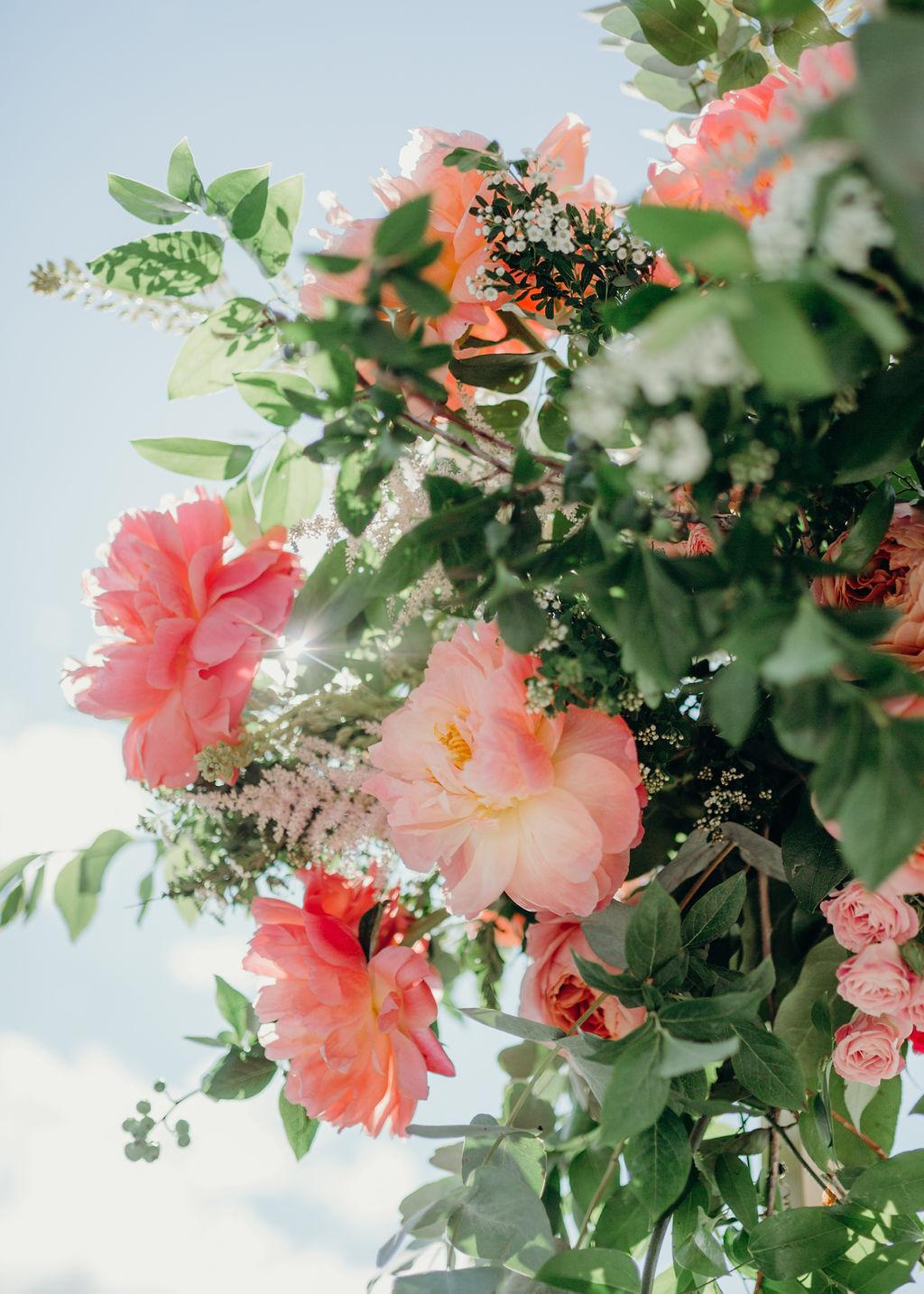 kadriphoto.com-8071.jpg