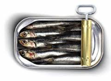 sardines.png