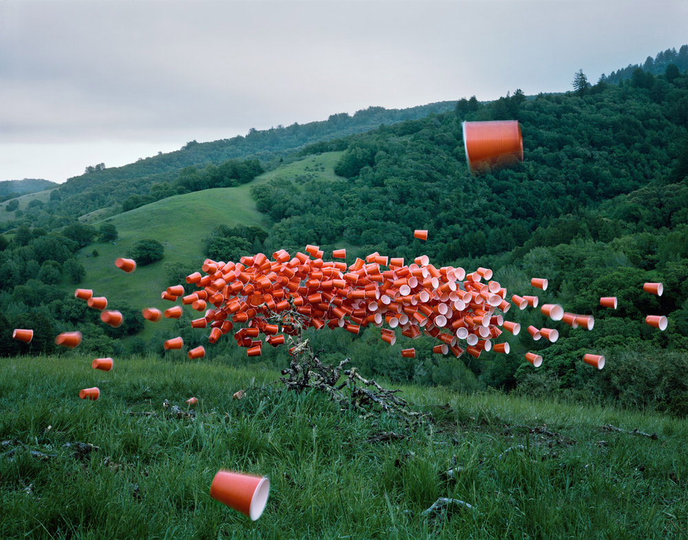 Image by: Thomas Jackson  -Cups #3