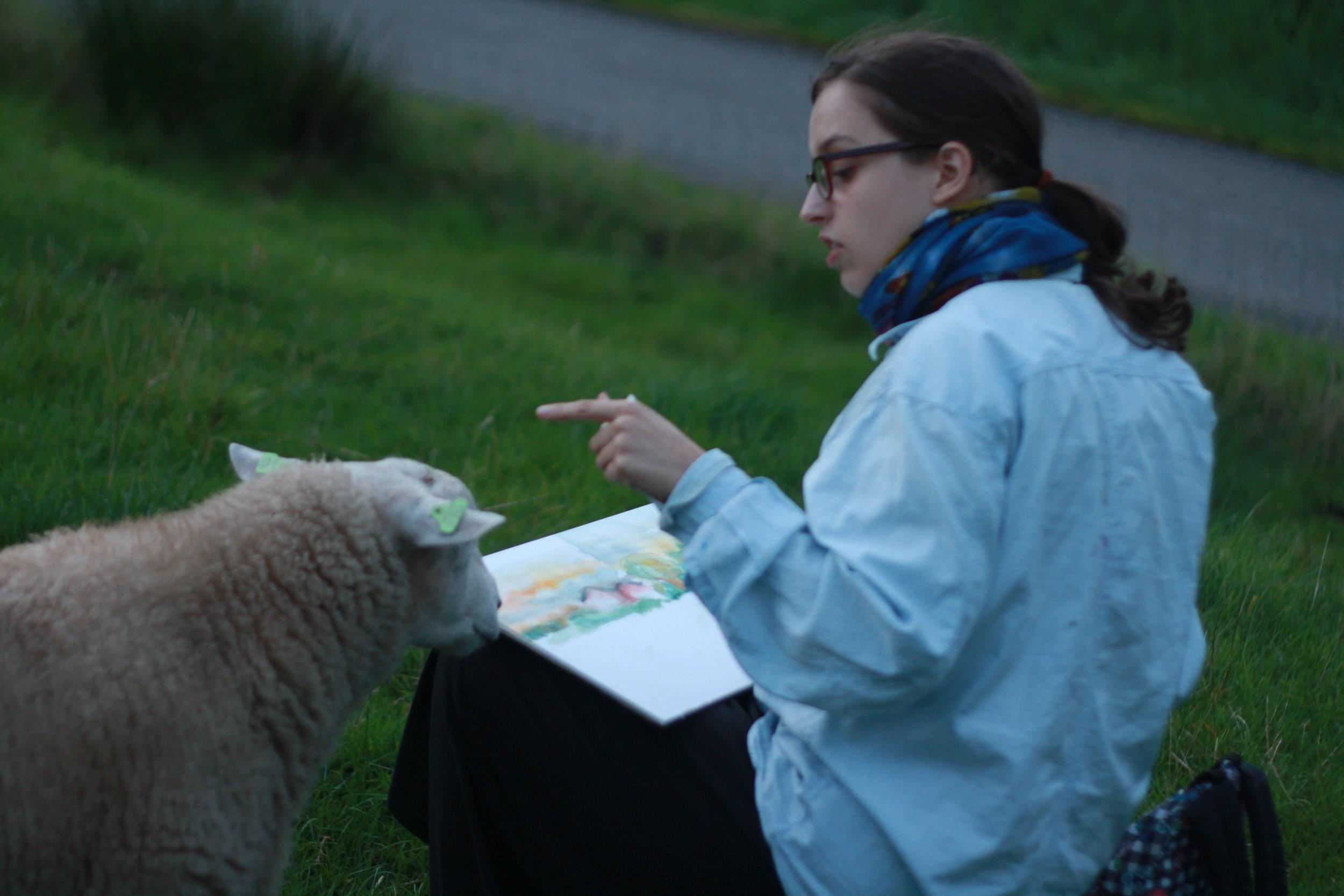 Schilderen in Hoogland (Amersfoort), met brutale schapen