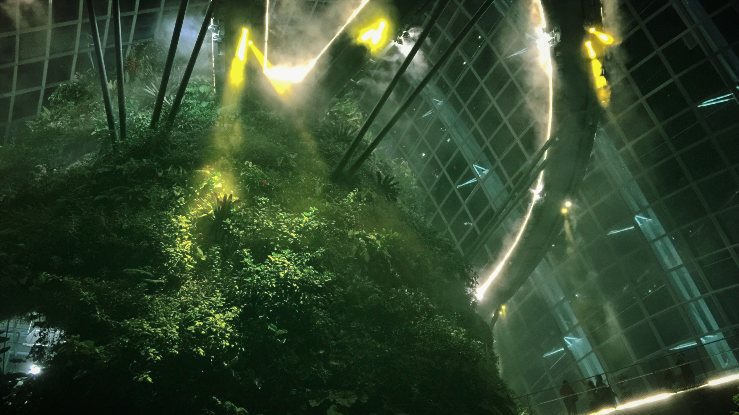 A snap from Gardens by the Bay in Singapore - to me, it truly felt like a forest in a spaceship from the future.