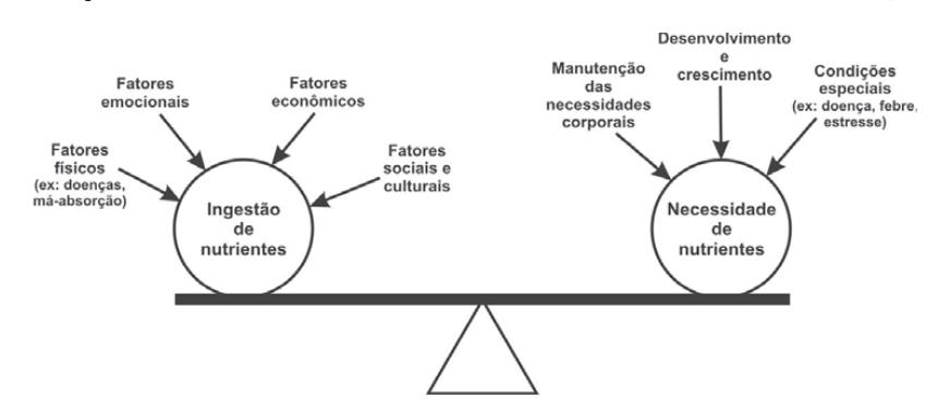 Fonte: Martins, 2009