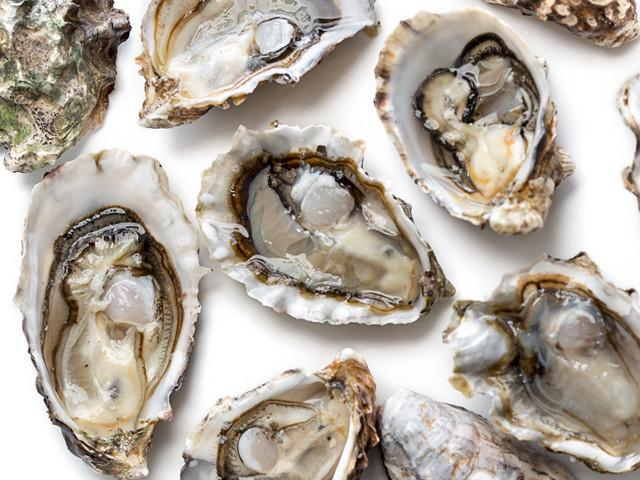 oysters-blue-pool-oysters-3_1024x1024.jpg