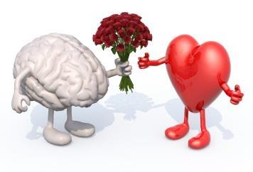 Brain_Heart02111_dp_article.jpg