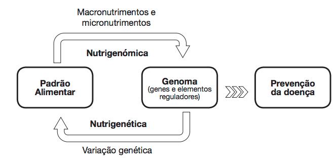 O que é genômica nutricional? — ANDREIA TORRES